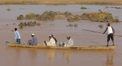 Les passeurs prennent gratuitement les enfants qui doivent traverser le Niger pour rentrer chez eux.